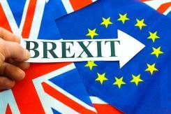 referendum-brexit-3